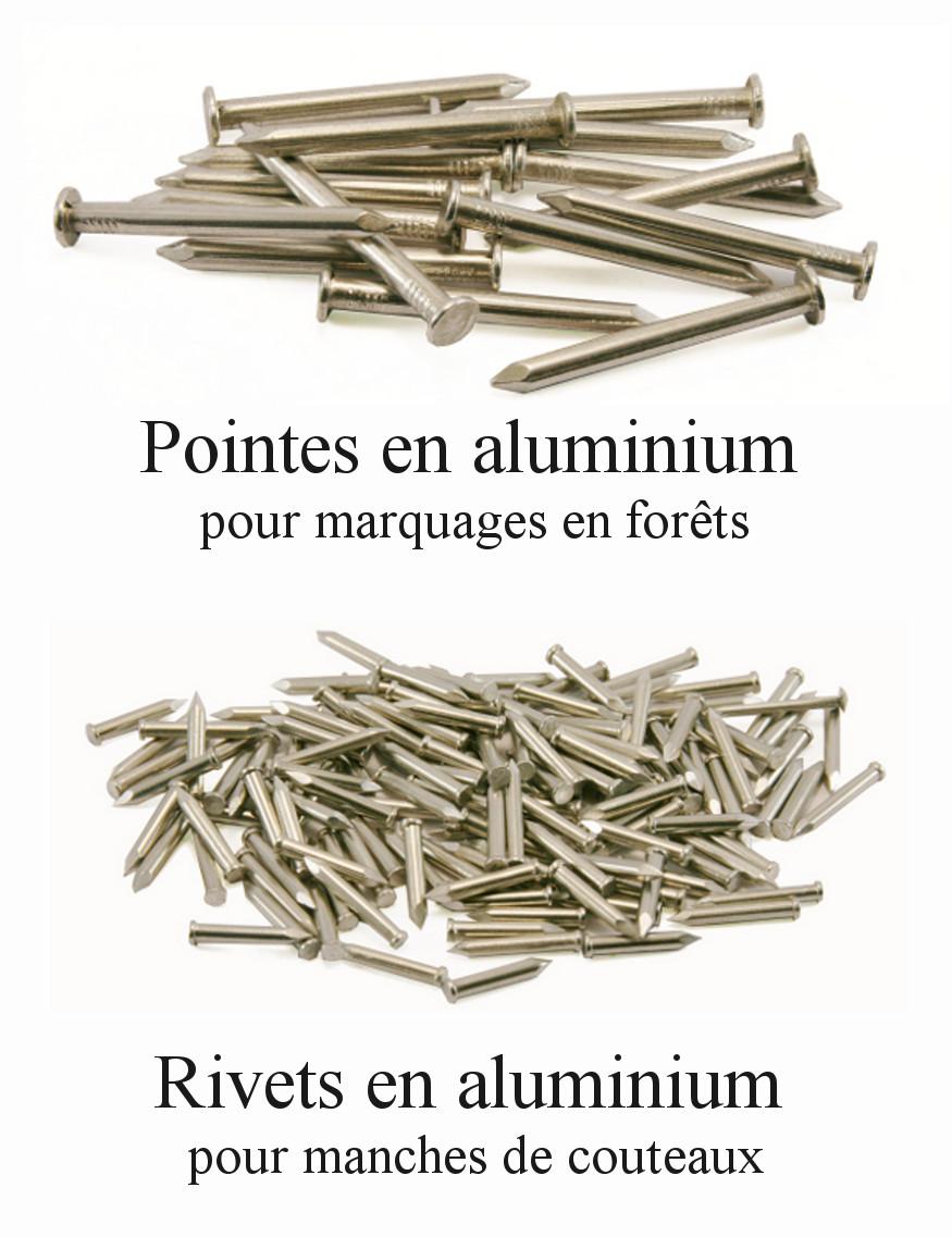 Clous en aluminium : pointes et rivets
